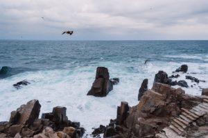 Urlaub am Schwqarzen Meer