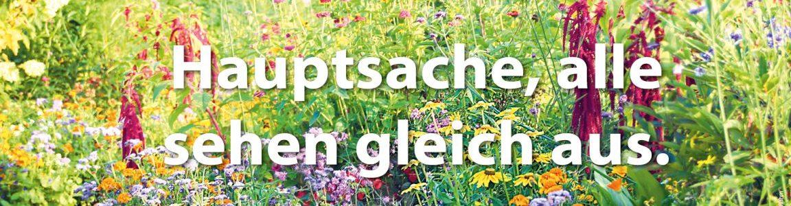 bunt ist schöner - Ausstellung in Rostock