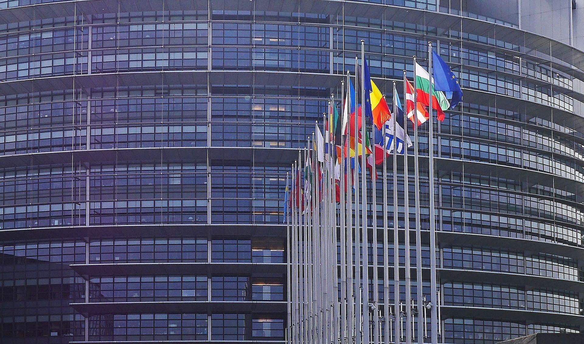 Die Wahlen zum EP finden im Mai 2019 statt.